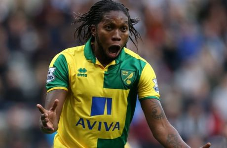 Norwich City's Dieumerci Mbokani celebrates his goal during their English Premier League soccer match between  Newcastle United and  Norwich City at St James' Park, Newcastle, England, Sunday, Oct. 18, 2015. (AP Photo/Scott Heppell)