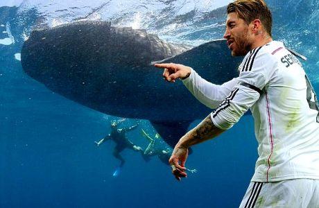 Ο Ράμος κολυμπάει δίπλα σε φαλαινοκαρχαρία 20 τόνων!
