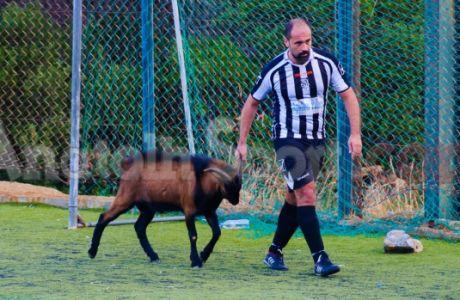 Τράγος εισβάλλει σε γήπεδο (VIDEO)