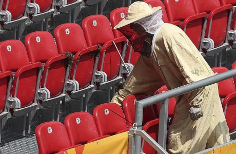 Firefighters in protective dress are removing a swarm of bees that settled at a stadium in Lodz, Poland, Friday, June 7, 2019, just hours before the first quarter-finals match between Ukraine and Colombia of the U-20 football tournament.(AP Photo/Czarek Sokolowski)