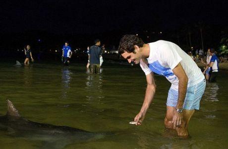 Ο Φέντερερ ταΐζει δελφίνια (PHOTOS)
