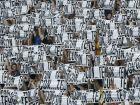 Η απονομή στην Γιουβέντους (VIDEOS+PHOTOS)