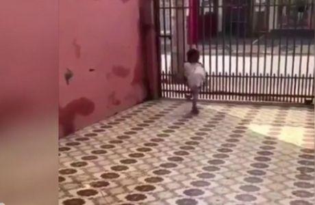 Ο 3χρονος Βραζιλιάνος που είναι γεννημένος... πρωταθλητής