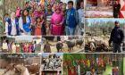ΔΟΜ: 16.500 εθελούσιες επιστροφές στην επόμενη τριετία