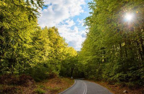 Το στοίχημα του Green Deal της Ευρώπης πρέπει να κερδηθεί