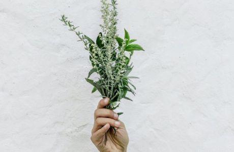 Ενδείξεις ότι η κρητική χλωρίδα μπορεί να μειώσει τα συμπτώματα του κορονοϊού